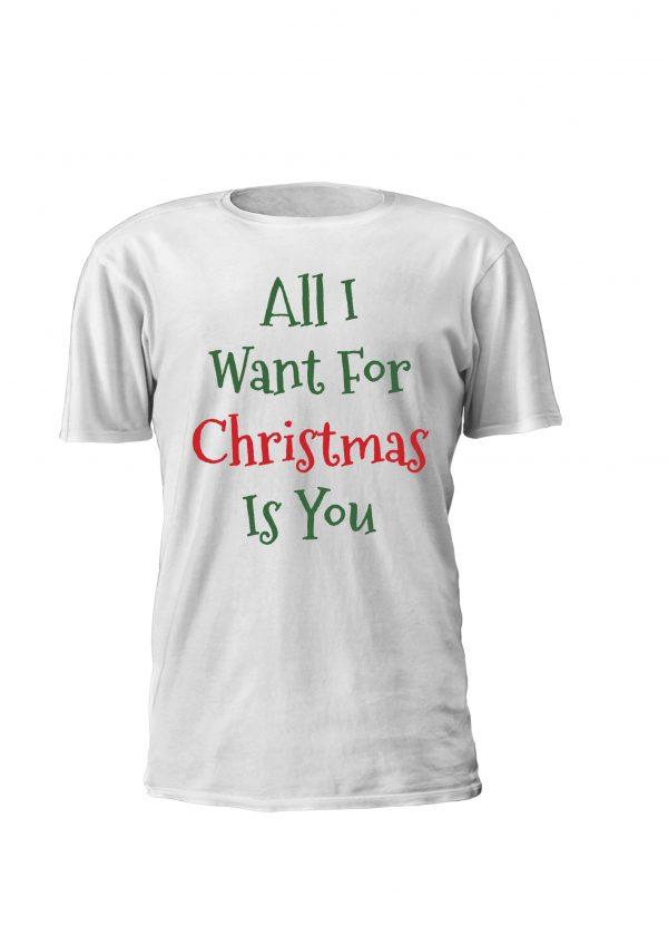 All I Want For Christmas Is You. T-shirt e sweatshirt personalizadas para criança com tema de natal. Lettering verde e vermelho